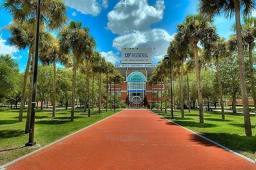 University-of-Florida-Online-Psychology-Degree