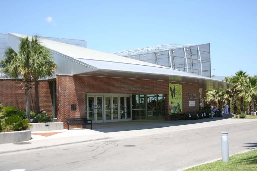 University_of_Florida_Natural_History_Museum