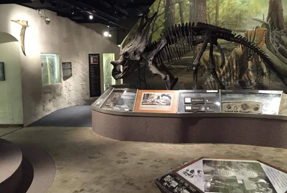 University_of_Nebraska_State_Museum
