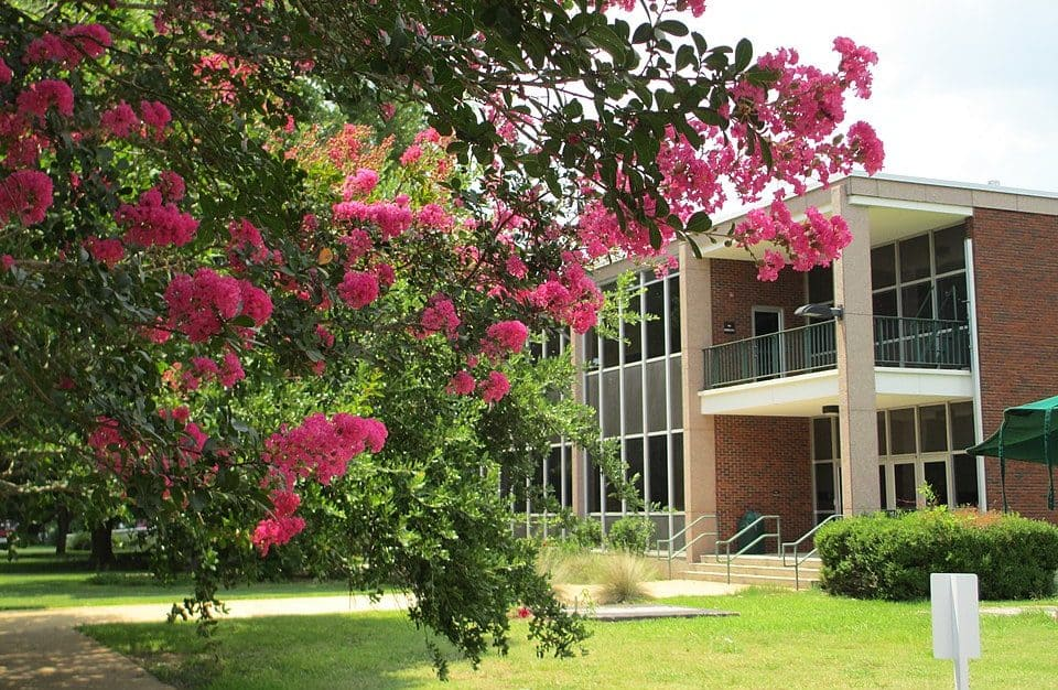 best colleges in Louisiana_Louisiana_State_University-Alexandria