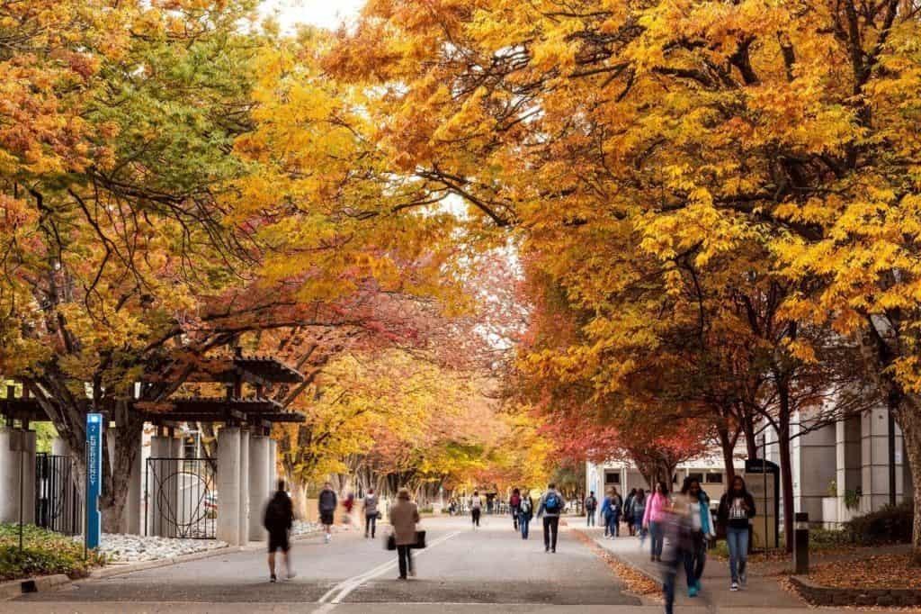 best colleges & universities in california_CSU_Sacramento