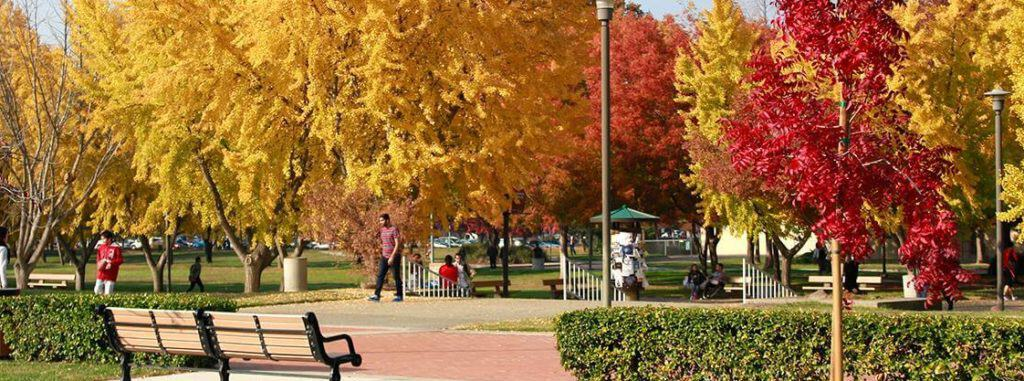 best colleges & universities in california_CSU_Stanislaus