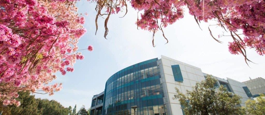 best colleges & universities in california_California_State_University_Fullerton
