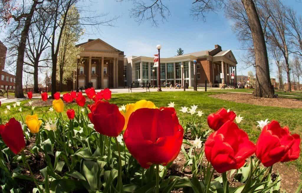 best online graduate programs_Indiana_University_of_Pennsylvania_main_campus