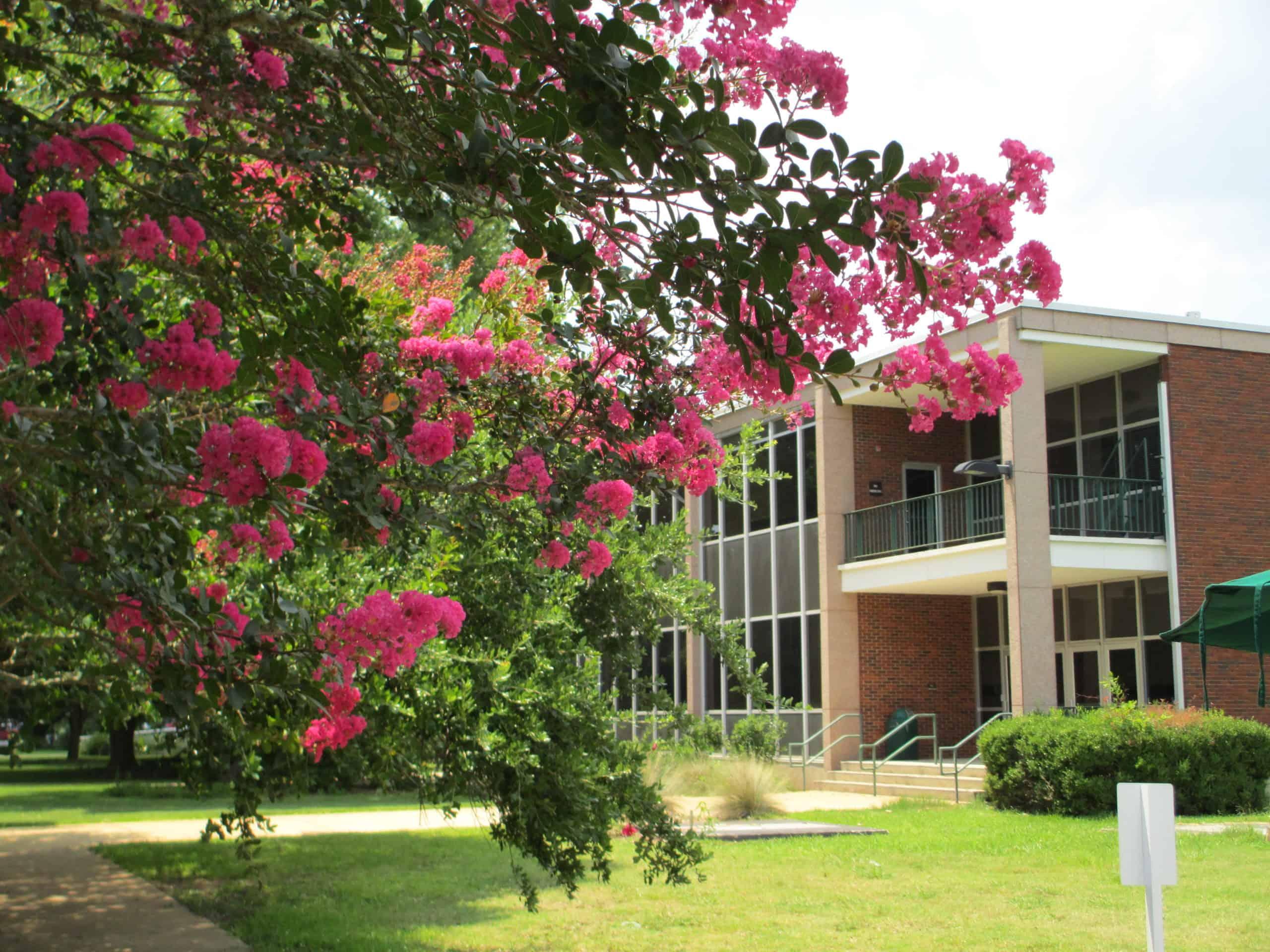 Best_Colleges_Universities_Louisiana_Louisiana_State_University_Alexandria
