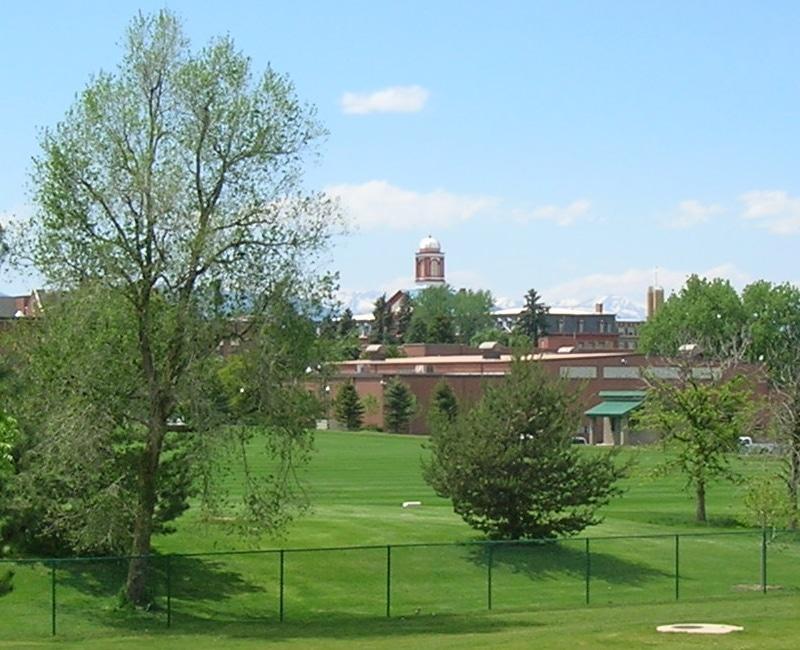 Best_Online_Bachelor's_Marketing_Degree_Program_Regis_University